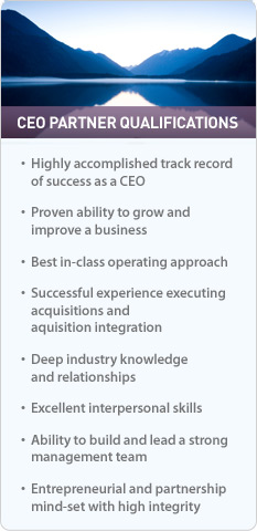 CEO Partner Qualifications
